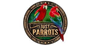 Just Parrots Roma
