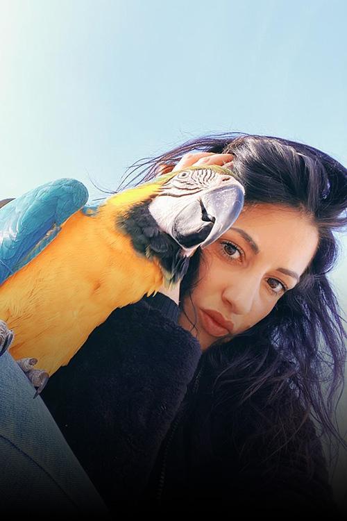 passione-pappagalli-chiara-alessandrini-presidente